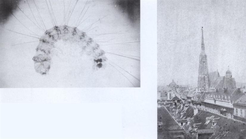 tafeln zu dem vortrage der polygraphische apparat der k k hof und staatsdruckerei in wien by alois auer