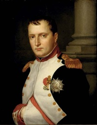 portrait of napoléon by jacques louis jules david