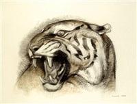 tête de tigre by henri-robert husset