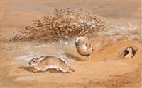 rabbits tumbling and on the run, with a weasel/stoat looking on by frank paton