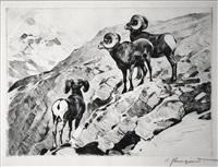 cliff dwellers by carl clemens moritz rungius