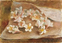 flowers in a white cloth by nachum gutman