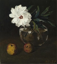 still life with peonies & apples by marie van regteren altena