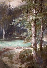 pejzaż leśny by elviro michael andriolli