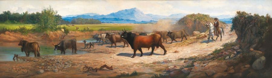 troupeau de taureaux by fred amerigo