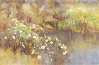wild roses by a stream by ethel atcherley