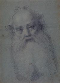 the head of a bearded man by bernardino lanino