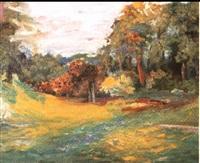 paysage by jean-michel cornea