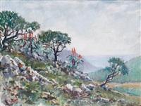 aloe on a hillside by viktor ivanov