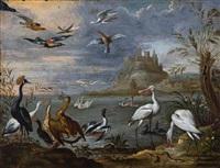 eksotiske fugler ved monemvassia by ferdinand van kessel