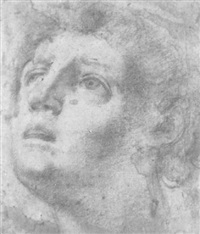 head of a young man by lionello spada
