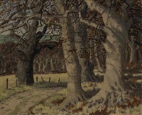 trees at wicklow by mabel young