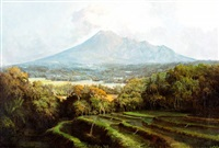 landschap met rijstvelden en vulkaangebergte by soerjosoebroto abdullah