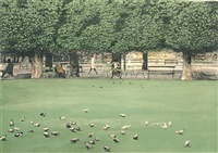 pigeons ii by harold altman