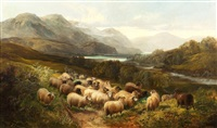sheep in an extensive highland landscape by joseph denovan adam
