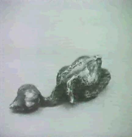 fagelunge by asmund arle