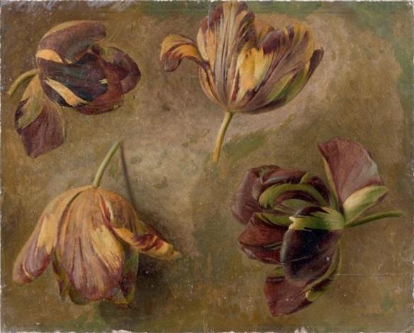 etude de tulipes study by cornelis van spaendonck