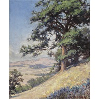 sunny california hillside view by james albert holden