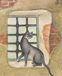 chat devant la fenêtre by jellal ben abdallah