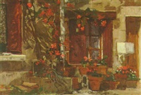 roses, quercy by mary jackson