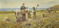 the potato harvest by thomas james lloyd