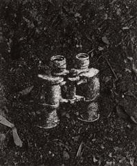 binoculars by vik muniz