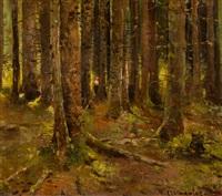 w lesie by piotr stachiewicz
