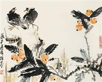 枇杷八哥 by liang qi