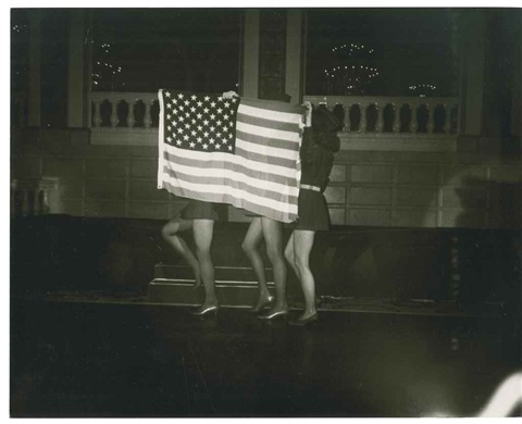 flag with legs by andy warhol