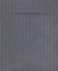 pocket by domenico gnoli