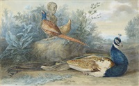 paon et faisan dans un paysage sous un buste de faune by aert schouman