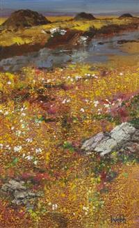bog cotton and heather, connemara by kenneth webb