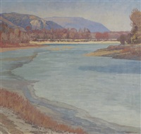 donauarm in februarsonne by max kahrer