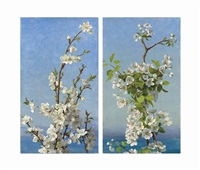 two studies of hawthorn blossom, capri (2 works) by sophie anderson