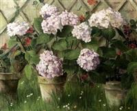 pot d'hortensias devant une treille by berthe art