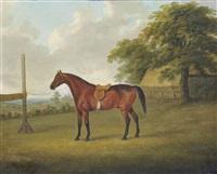 un cheval bai sellé dans un champ by john nost sartorius