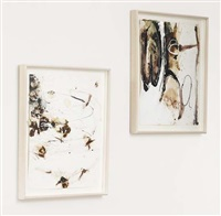 everafter (+ whatever; 2 works) by suzanne mcclelland