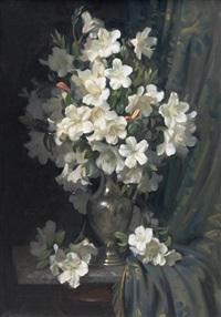 white rhododendron by ernest william buckmaster