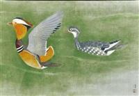 mandarin duck by atsushi uemura