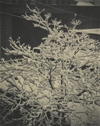 out of window-291-n.y. by alfred stieglitz