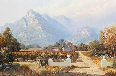 harvest time in the cape by michael albertyn