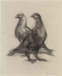 pigeons by nicola hicks