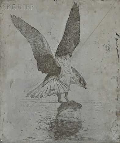 the canceled zinc plate for the etching fish hawk by frank weston benson