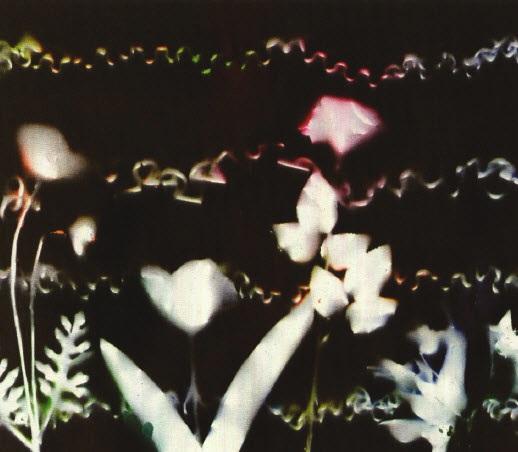 untitled by yuichi higashionna
