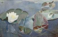 water lilies by dirk smorenberg