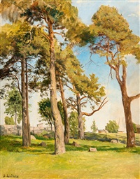 landscape with pine trees by berndt adolf lindholm