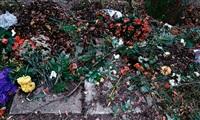 cemetery (nr. 2 aus einem zyklus von 24) by hubertus hamm