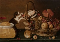 nature morte à la corbeille de fruits, aux oiseaux et au chat by harmen van steenwyck