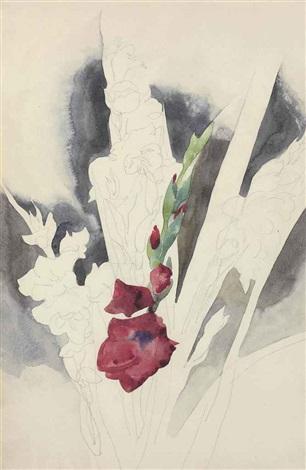 gladioli by charles demuth