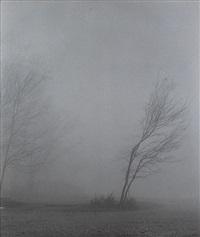 df019 bhm (deepfog series) by min byung hun